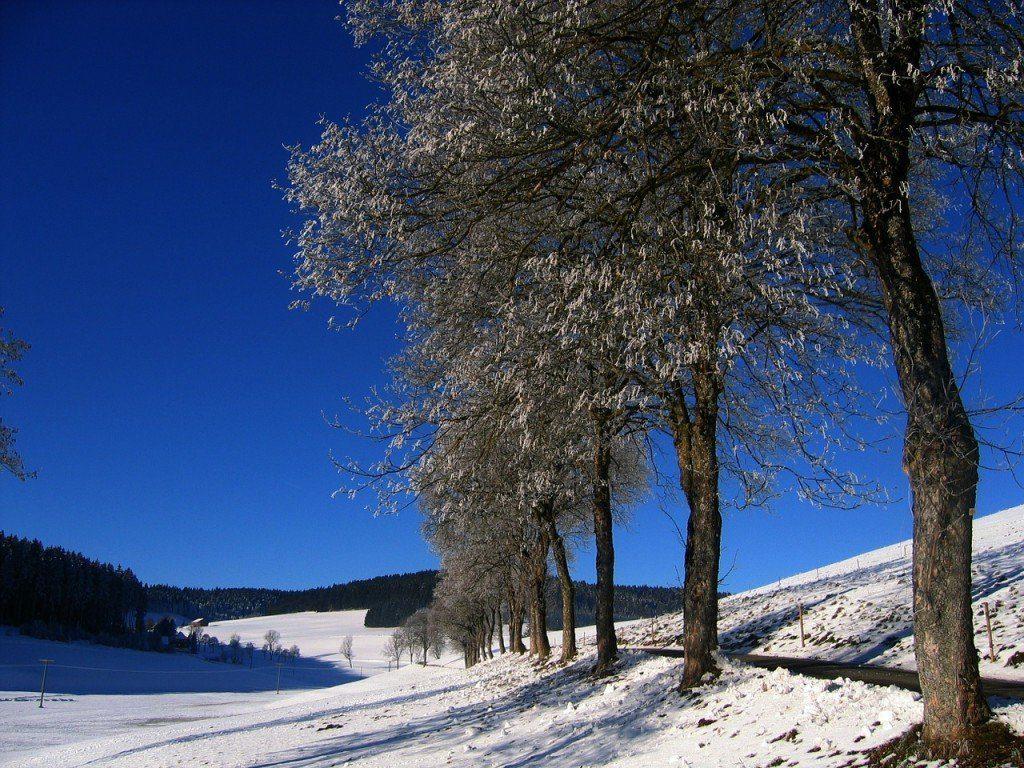 El cielo azul de invierno, sin mucha nieve es sinónimo de un día realmente frío.