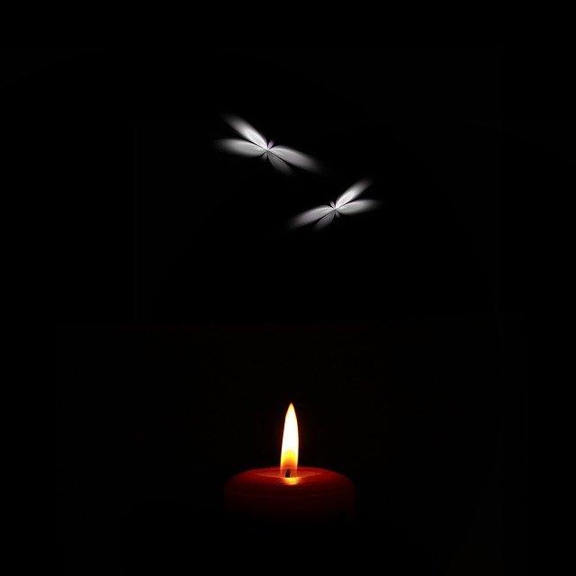 Mariposas atraídas por la luz que quema