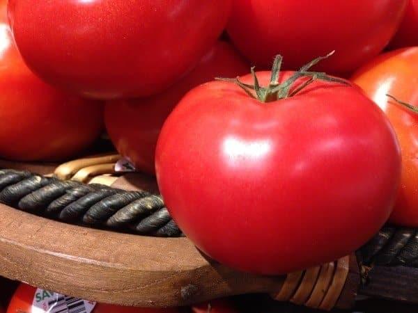 tomate pomodoro aprendizaje idiomas canada
