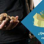 ¿Qué se come en Canadá?: Una guía para los que aman la buena comida [Infografía]